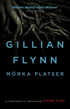 Gillian Flynn Mörka platser